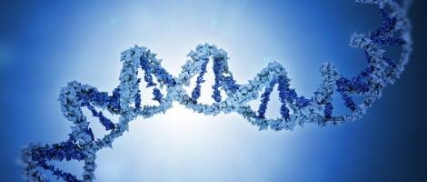 Análisis genético del embrión