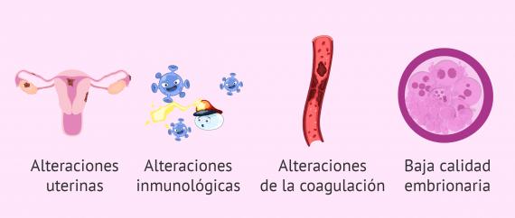 ¿Por qué puede ir mal un ciclo de ovodonación?