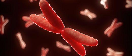 DGP para evitar transferir embriones con alteraciones genéticas